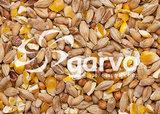 Garvo-Gemengd graan met gebroken mais 5141_