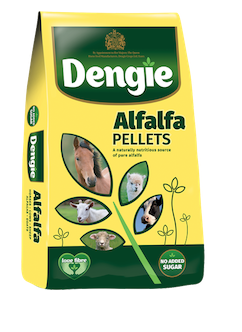 Dengie Alfalfa Pellets 20 kg