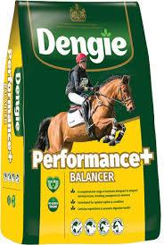 Dengie performance Balancer 15 kg