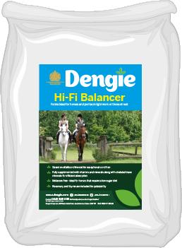 Dengie HI-FI Balancer 15 kg