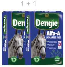Dengie Alfa-A Molasses Free 2 * 15 kg   * DUO COMBI*